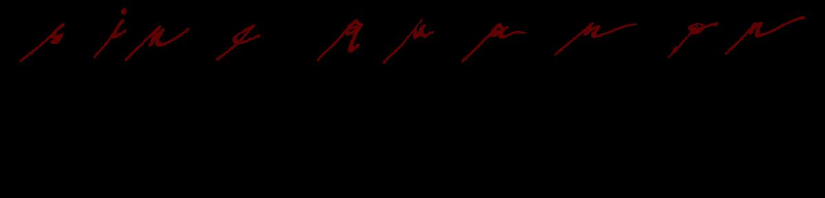 Sine Qua Non Logo transparent
