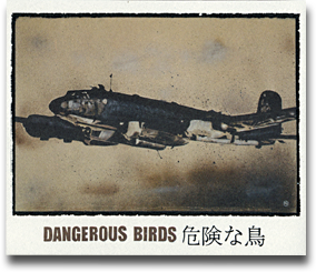 wine-label-dangerous-birds-2