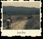 wine-label-jinete-bajo